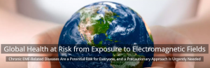 The International EMF Alliance