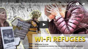Wifi Refugees