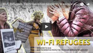 Wifi Refugees